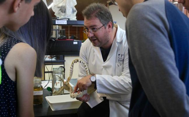 Educación diagnostica a dos mil alumnos de Málaga con altas capacidades intelectuales