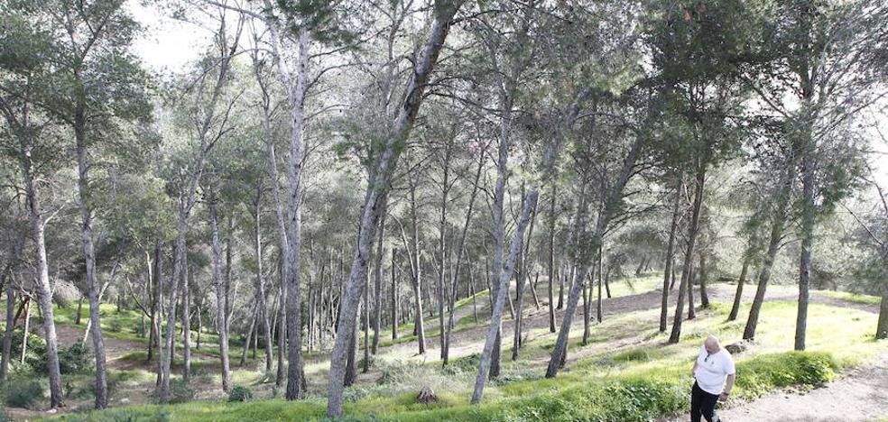 El Ayuntamiento adjudica las primeras obras para usar Gibralfaro como parque