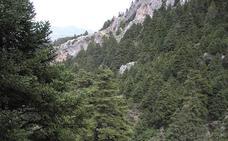 Siete cosas que no sabías sobre la Sierra de las Nieves