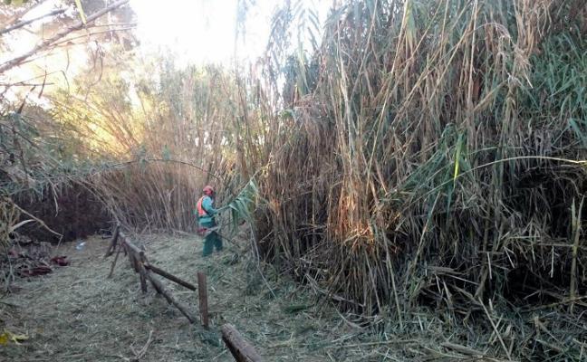 El Ayuntamiento de Estepona limpia el cauce de cinco arroyos para evitar inundaciones