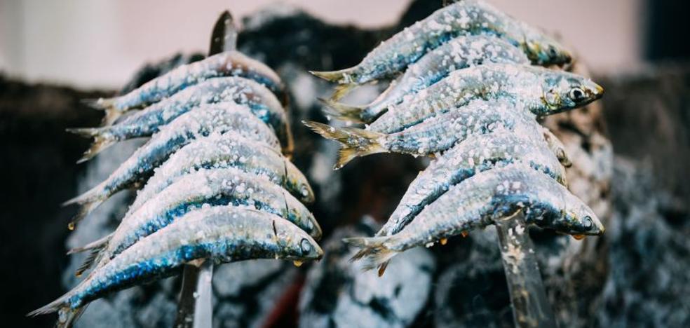 ¿Por qué los meses sin 'erre' son mejores para comer sardinas?