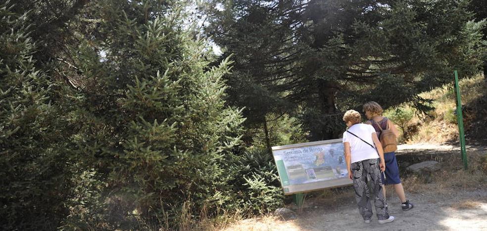 Comienza la consulta pública sobre la reconversión de la Sierra de las Nieves
