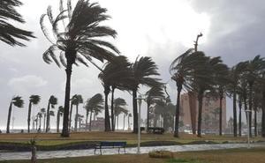 Málaga, en aviso amarillo hoy por fuertes rachas de viento