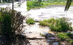 El PSOE denuncia un vertido de aguas fecales junto a un colegio de San Pedro