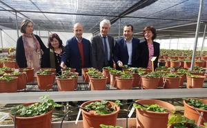 90 años de investigación agraria en Churriana