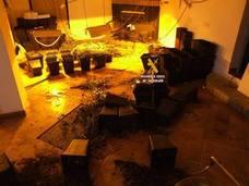 Tres detenidos de una red que cultivaba marihuana en una finca rural en Vélez-Málaga