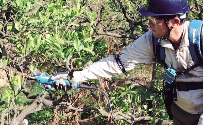 Makita, máquinas a batería para el cuidado del jardín: cero emisiones y ruidos, máxima garantía y calidad