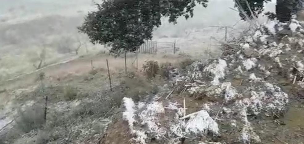 La nieve vuelve a hacer su aparición en la Axarquía