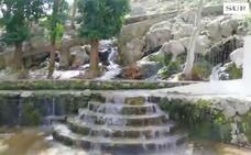 El nacimiento del río de Cuevas del Becerro 'revienta'