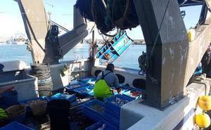 «Somos la mitad de barcos de hace 10 años y con los límites habrá escasez de pescado»