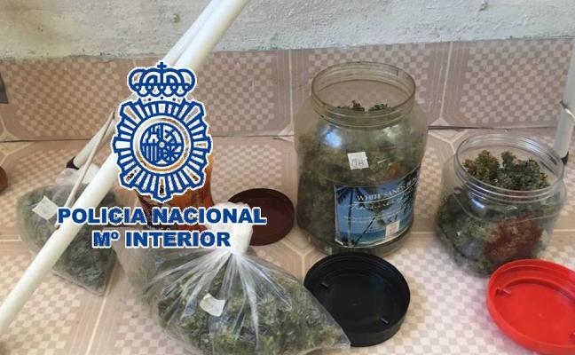 Detenido en Estepona por cultivar y vender marihuana desde su casa