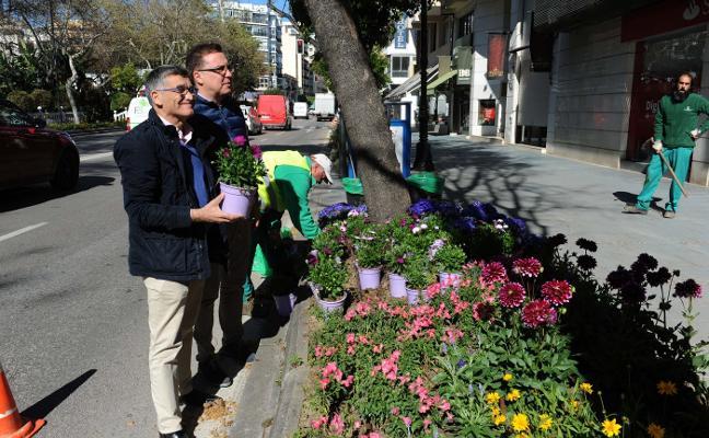 El plan de mejora de zonas verdes llena las calles con 20.000 flores