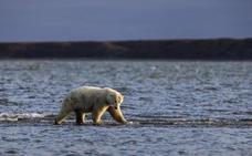 La ruptura del vórtice ártico y el calentamiento del mar, culpables de las intensas lluvias