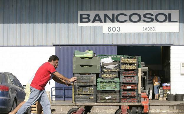 Bancosol repartió el pasado año seis millones de alimentos de los que el 15% proviene de campañas solidarias como la Gran Recogida. /Ñito Salas