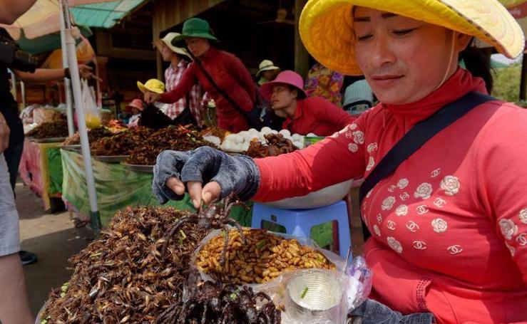 El placer gastronómico de las tarántulas, en peligro