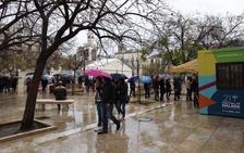 La lluvia no puede con los fans de Guillermo del Toro