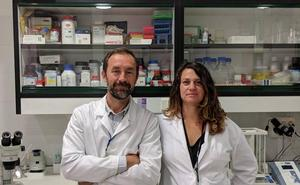 Dos malagueños participan en el diseño del fármaco con potencial para frenar la diabetes tipo 1