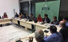 Agricultura traslada a la Mesa de Sanidad Vegetal «toda la información» del caso aislado del 'ébola del olivo' detectado en Almería