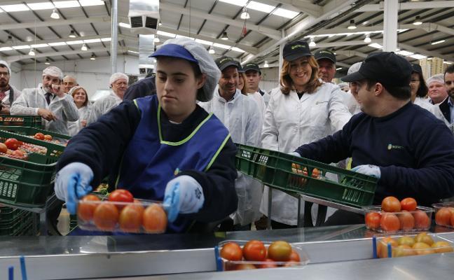 Andalucía vuelve a batir récord en exportaciones gracias a China