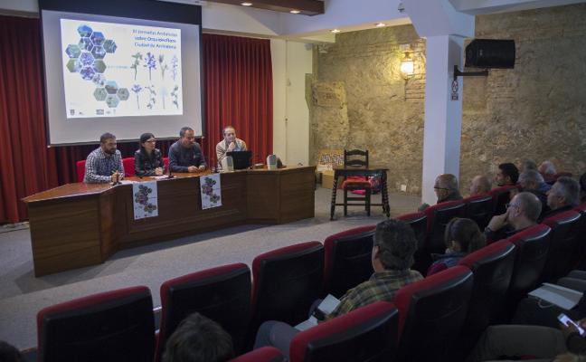 Archidona acoge las jornadas andaluzas sobre orquideoflora