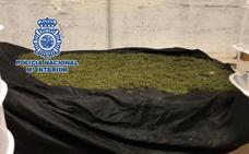 Desmantelan en Churriana un laboratorio de marihuana instalado en el sótano de una vivienda
