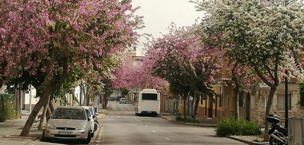 San Juan Bosco: calle de contrastes