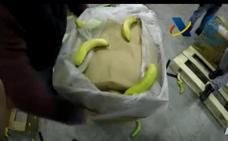 Tres detenidos en Málaga tras la incautación en Algeciras del mayor alijo de cocaína en un contenedor en Europa, oculta en plátanos