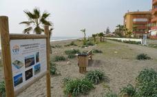 Los vecinos de Rincón de la Victoria decidirán en una consulta el modelo del paseo marítimo de Torre de Benagalbón