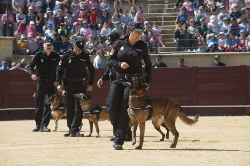 Fotos de la exhibición de la Policía Nacional en Torremolinos