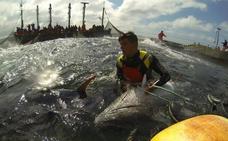 Ruta del atún de almadraba