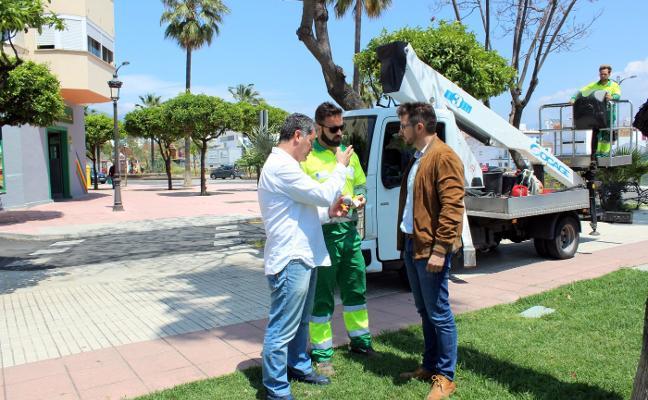 Bichos elimina plagas en Estepona
