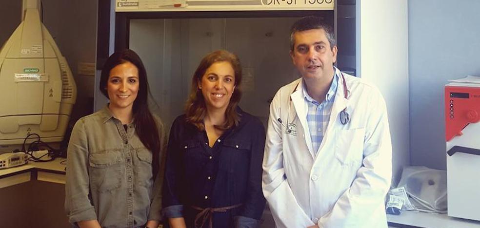 Un estudio ve relación entre las bacterias intestinales y el infarto y la angina de pecho