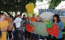 Más de 800 padres exigen en Marbella la continuidad de los comedores escolares con cocina municipal