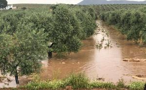Cortan al tráfico la carretera N-331 en Antequera tras una tromba de agua