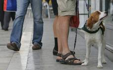 Marbella repartirá bolsas y botellas para limpiar la orina de los perros