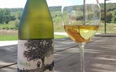 17 vinos blancos malagueños imprescindibles