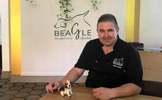 Un entorno relajante en Beagle Marbella