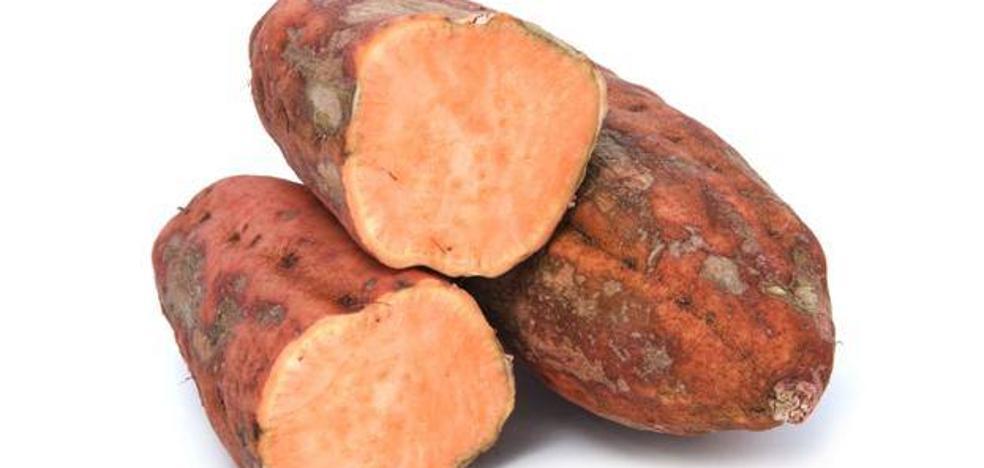 La batata, el primer subtropical de Málaga