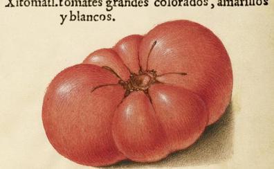 Gazpacho de jitomate, el primer gazpacho rojo