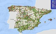 This is how to find the best petrol and diesel fuel prices in Spain
