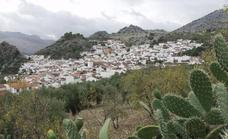 No large municipality in Andalucía exceeds the 1,000 Covid rate one day ahead of the curfew restriction revisions