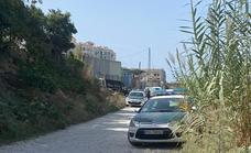A gardener dies after a palm tree falls on him in Nerja