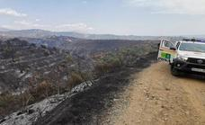 The Sierra Bermeja wildfire forces the closure of the AP-7, near Estepona, to traffic again