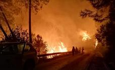 Infoca scrambles 29 aircraft to try and control the huge wildfire near Estepona