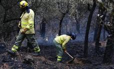 Almost 100 firefighters continue to dampen down hotspots in the Sierra Bermeja