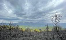 The Sierra Bermeja fire will increase the risk of flooding on the Costa del Sol, warns expert