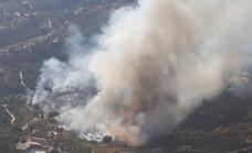 Video | Wildfire declared in Frigiliana