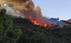 Forest firefighters work through the night to stabilise the Casares blaze