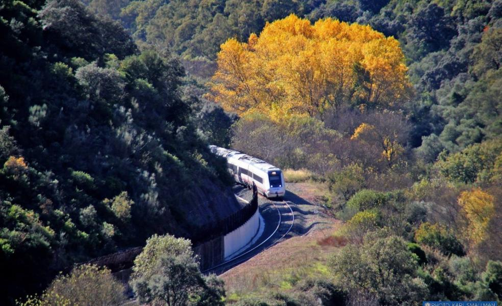 Central government doubles its investment in Malaga, but leaves out Costa train again