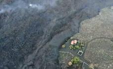 Video | Cargo drone rescue plan for dogs trapped by molten lava on La Palma